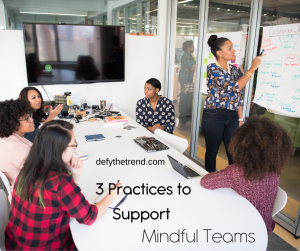 Picture of a Team in a Meeting with the words: 3 Practices to support Mindful Teams - defythetrend.com