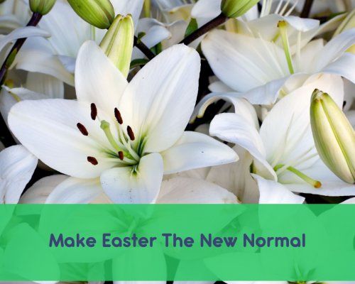 Picture of Easter Lillies with words: Make Easter the New Normal