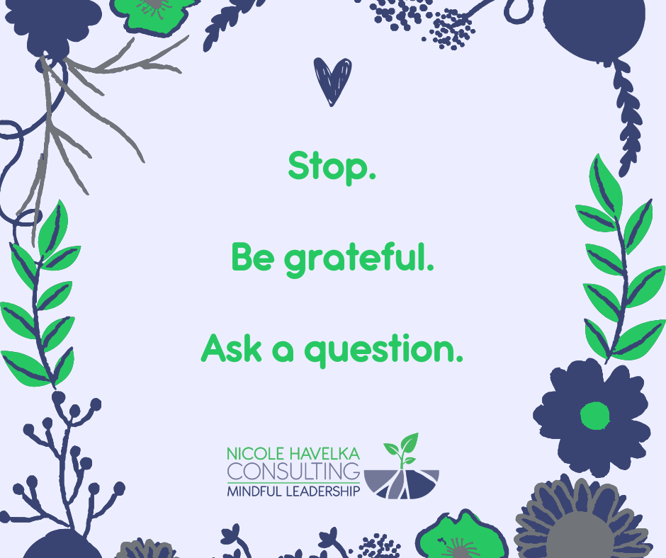 A Graphic with the words: Stop. Be Grateful. Ask a Question. Surrounded by flowers and leaves and the Nicole Havelka Consulting Logo.