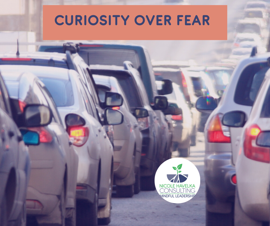 """Picture of cars packed on the road bumper to bumper with the blog title, """"Curiosity Over Fear"""" at the top and the Nicole Havelka Consulting logo on the bottom right."""